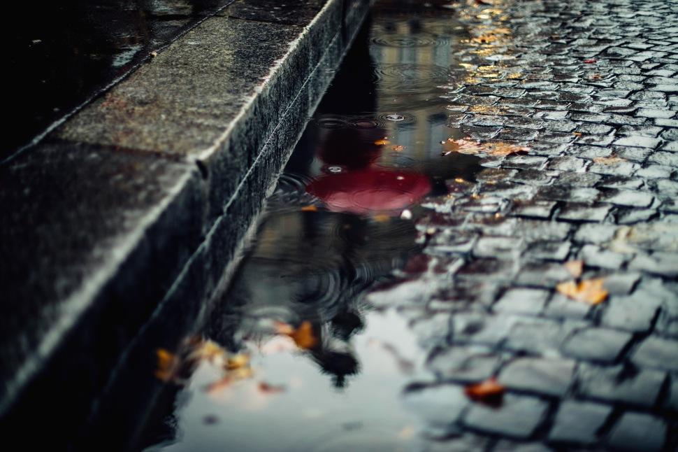 red umbrella in reflection raining paris