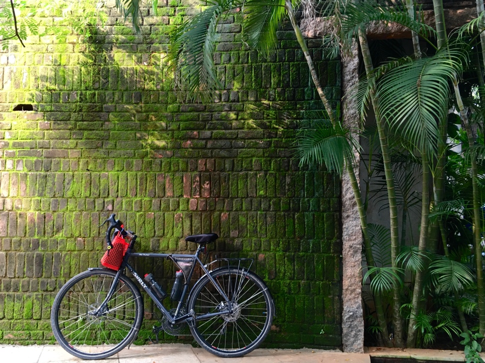 Jess' trusty bike in tropical India